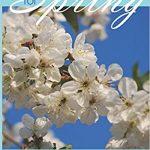 Spring Puzzle book