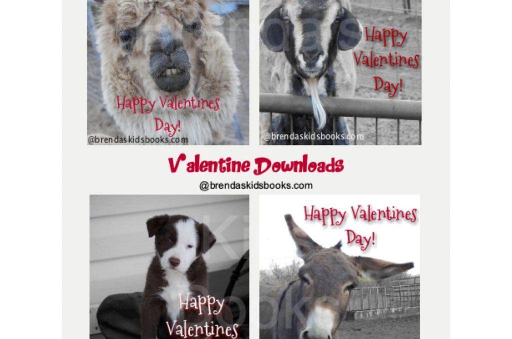 Valentines, farm animals, alpaca, puppy, donkey, goat, Happy Valentines Day